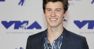 Shawn Mendes Holds Virtual Concert With Messenger